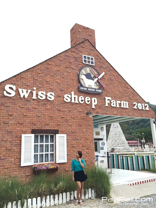 Swiss Sheep Farm (4)