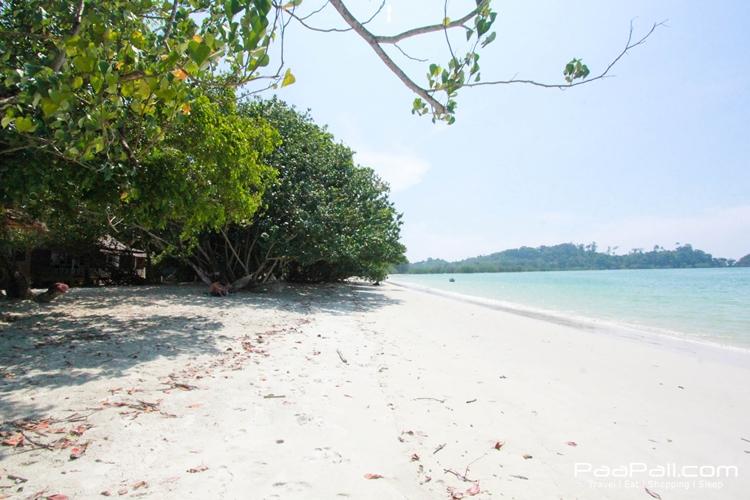 ธรรมชาติยังพิสุทธิ์บนเกาะพยาม