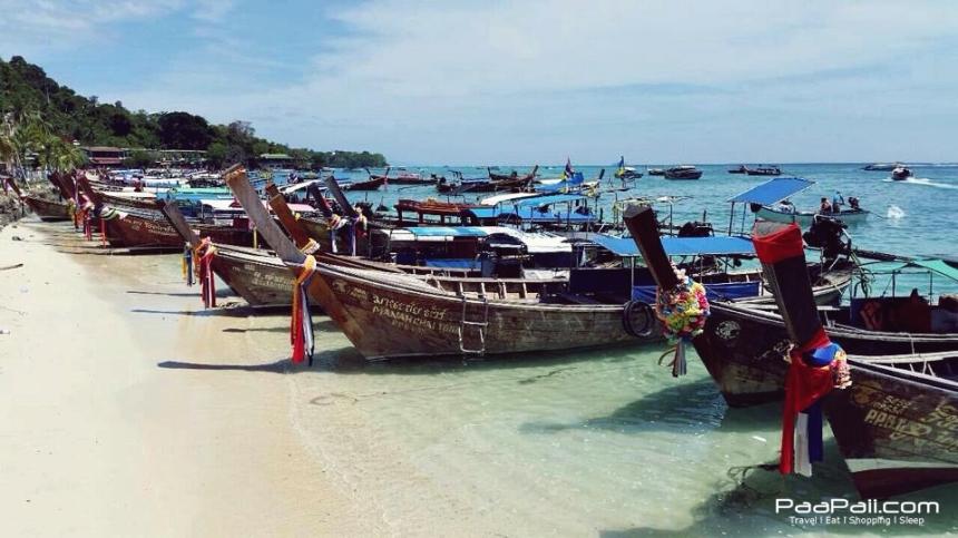 เกาะพีพี หมู่เกาะพีพี  (17)